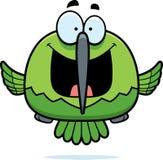 Happy Little Hummingbird Royalty Free Stock Photo