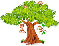 Happy little monkey hanging on tree. Illustration of Happy little monkey hanging on tree Royalty Free Stock Photography