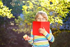 Happy little preschool kid boy with glasses, books, apple and backpack on his first day to school or nursery. Funny. Healthy child outdoors on warm sunny day royalty free stock image