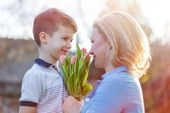 Happy son gives bouquet of tulips to mom at Mother`s day in suns. Happy little son gives bouquet of tulips to mom at Mother`s day in sunset stock images