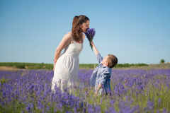 Happy little son gives mother to smell the flavor of a bouquet of flowers. In lavender field stock photography