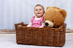 Happy little toddler in the basket with teddy bear Stock Image