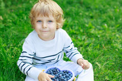 Happy little toddler boy on pick a berry farm picking strawberri Royalty Free Stock Photos
