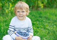 Happy little toddler boy on pick a berry farm picking strawberri Stock Photos