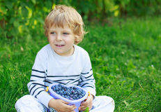Happy little toddler boy on pick a berry farm picking strawberri Royalty Free Stock Image