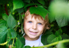 Happy little toddler boy with raspberries Stock Photos