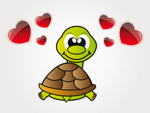 Happy little turtle in love Stock Photo