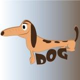 Happy long dog Stock Image