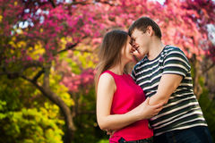 Happy loving couple are hugging in the orchard Stock Images