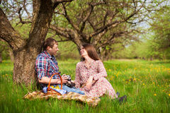 Happy loving couple on a spring meadow Stock Photography