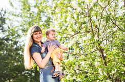 Happy loving family with baby son in blooming spring garden. Mother holding baby. Spending time together outdoor Royalty Free Stock Images