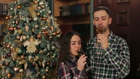 Couple clinks glasses of champagne for Christmas. Happy loving people drink champagne near a big beautiful Christmas tree stock video