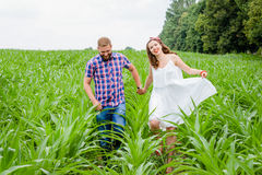 Happy loving young adult couple spending time on the field on sunny day. Happy young adult couple in love spending time on the field on sunny day outdoors royalty free stock images