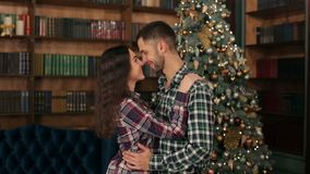 Portrait of loving couple near the Christmas tree. Happy loving young people stand embracing against the background of a Christmas tree in the library stock video footage