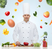 Happy male chef cook cooking food Royalty Free Stock Photos