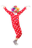 Happy male clown dancing. Full length portrait of a happy male clown dancing isolated on white background Royalty Free Stock Photos