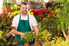 Happy male florist working flower gardening shop. Market assistant Stock Photography