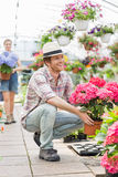 Happy male gardener holding flower pot with colleague standing in background at greenhouse Royalty Free Stock Photography