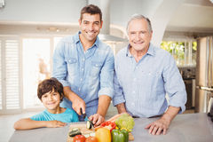 Happy man chopping vegetables with son and father Royalty Free Stock Image