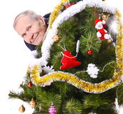 Happy man and christmas tree. Smiling mature Man looking out of Christmas tree Stock Photos