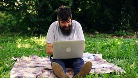 Happy man with a computer oudoors. Handsome hipster using laptop in park on a summers day. Mobile Office concept. stock video