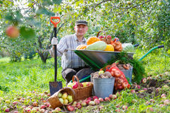 Happy man with a crop in the garden Stock Images
