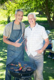 Happy man doing barbecue with his father Stock Photos