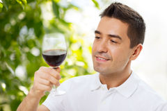 Happy man drinking red wine from glass. Profession, drinks, leisure, holidays and people concept - happy man drinking red wine from glass over green background Stock Images