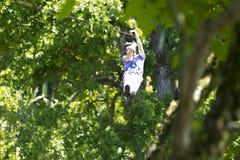 Happy Man Enjoying Zip Adventure. Happy Man Enjoying Zipline Adventure In The Forest Royalty Free Stock Photos