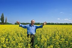 Happy man in a fields Stock Photography