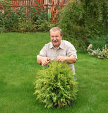 Happy man in a garden Royalty Free Stock Photography