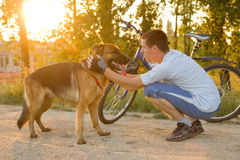 Happy man with a German Shepherd Dog in the park Royalty Free Stock Image
