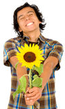 Happy man givng a sunflower Stock Images