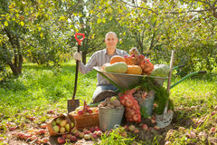 Happy man with  harvest in garden Stock Photo