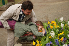 Happy man holding a child above the flower bed Stock Image