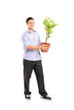 Happy man holding a pot with plant. Full length portrait of a happy young man holding a pot with decoration plant isolated on white background Royalty Free Stock Photos