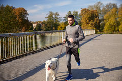 Happy man with labrador dog running outdoors Royalty Free Stock Photography