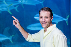 Happy man looking at camera beside the fish tank Stock Photos