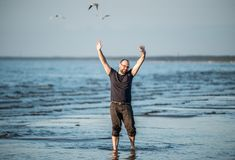 Happy man near sea. Hands up, smiling. Birds flying above royalty free stock photography