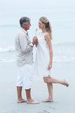 Happy man offering flower to his girlfriend Royalty Free Stock Photography