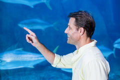 Happy man pointing a fish tank Royalty Free Stock Photos