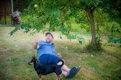Happy man Royalty Free Stock Photography