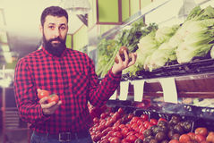 Happy man seller offering tomatoes in shop Royalty Free Stock Photography