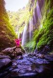 Happy Man standing on the rock in Madakaripura Waterfall, Java, stock images