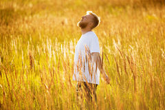 Happy man stands among the meadow grass Royalty Free Stock Photo