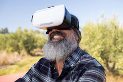 Happy man using virtual reality headset in olive farm. On a sunny day Royalty Free Stock Photos