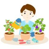 Happy man watering plants cartoon  Royalty Free Stock Photo