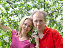 Happy man and the woman in blossoming apple-trees Royalty Free Stock Photography