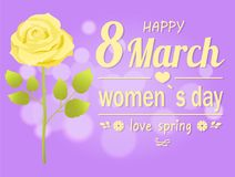 Happy 8 March Womens Day, Vector Illustration. Happy 8 March womens day and love spring, promo poster with headline and flower in full size, white rose and bokeh Stock Images