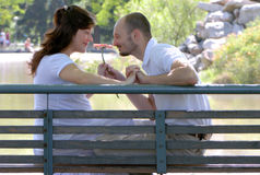 Happy married couple sitting on a bench Stock Photography